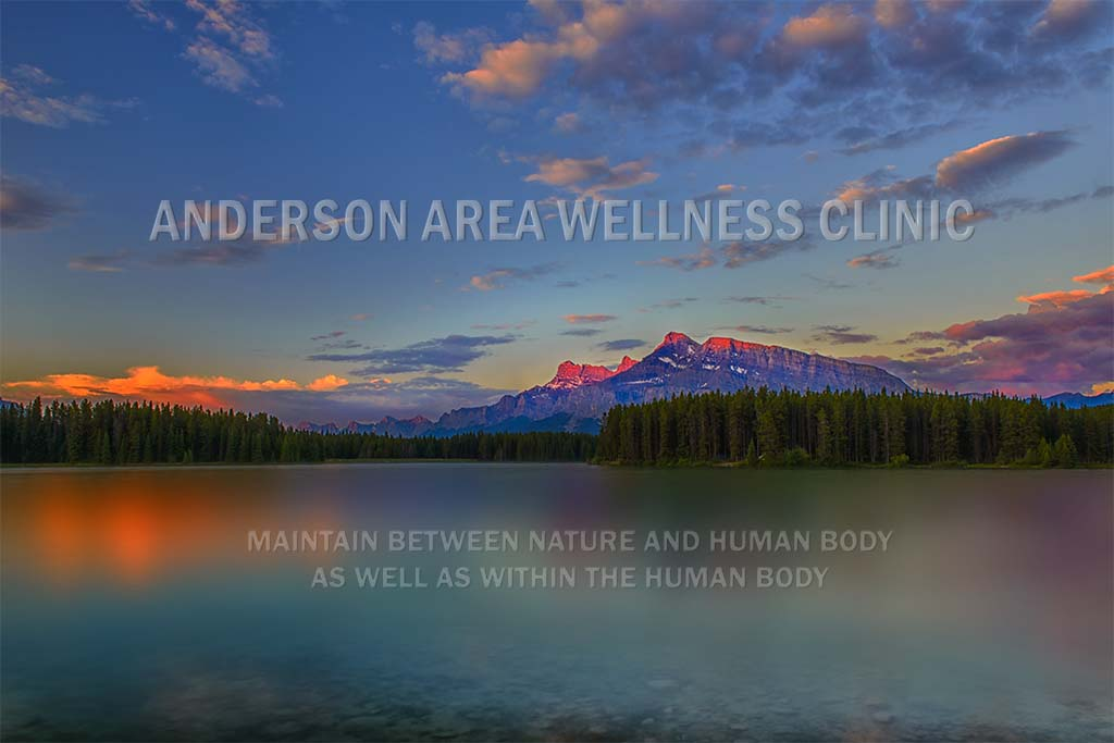 Calgary best acupuncture clinic - Anderson Area Acupuncture Wellness Clinic's cover page photo