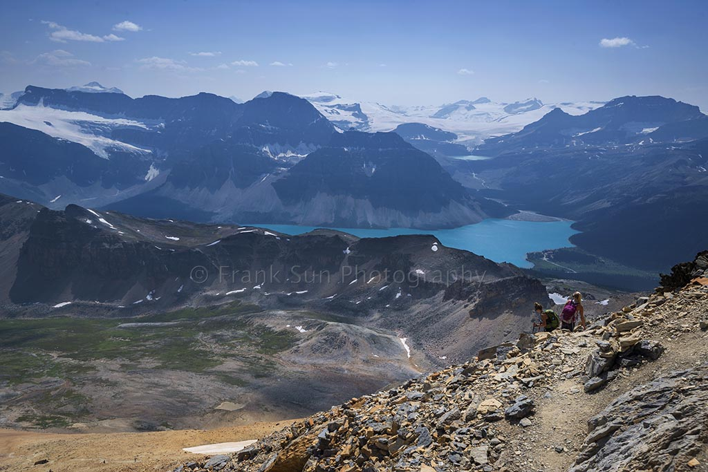 Far In The Distance Lies Wapta Icefield and Bow Lake